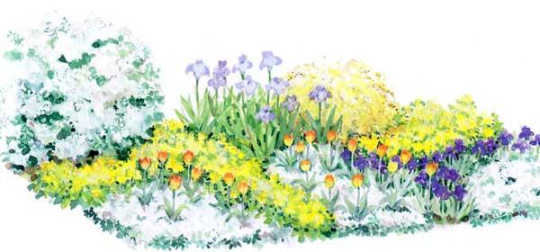 Весенний цветник с японской