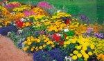 Оформление и планировка цветников